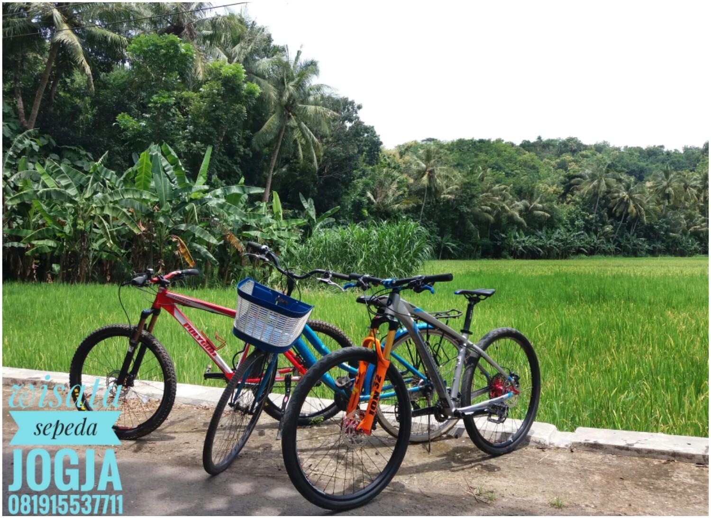 Paket Wisata Sepeda Jogja- Wisata Tilik Desa 08191 | VICTOR WISATA - Sewa menyewa jadi lebih mudah di Spotsewa