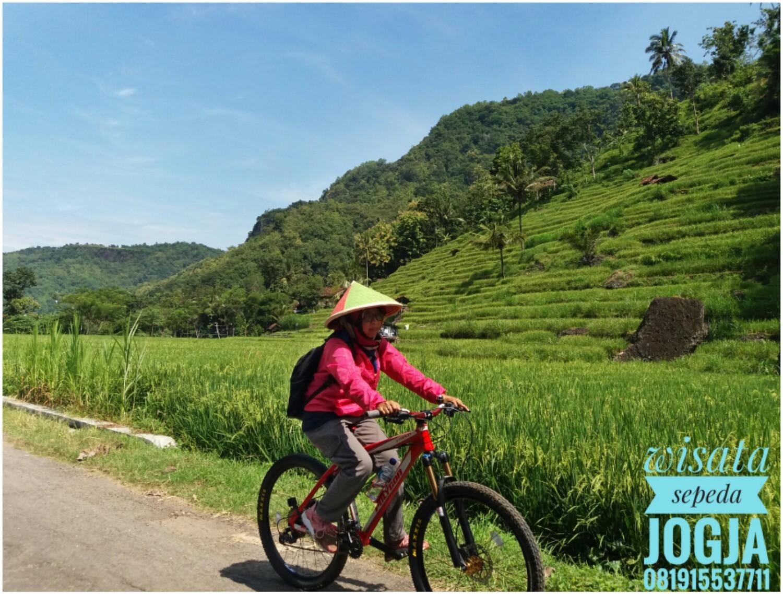 Sewa Paket Wisata Sepeda Jogja - Keliling Desa Wisata di toko VICTOR WISATA daerah Bantul, DI Yogyakarta - Sewa menyewa jadi lebih mudah di Spotsewa