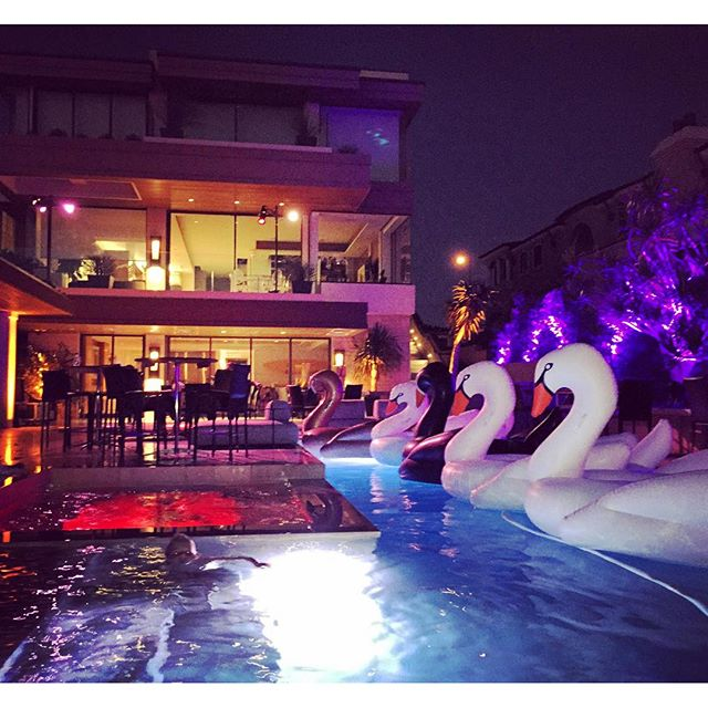 Sewa Kendall White Swan Floats di toko Le Float daerah Jakarta Pusat, DKI Jakarta - Sewa menyewa jadi lebih mudah di Spotsewa