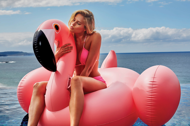 Sam Flam Flamingo Floats | Le Float