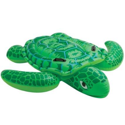 Mr. Turtle Pool Floats | Le Float - Sewa menyewa jadi lebih mudah di Spotsewa