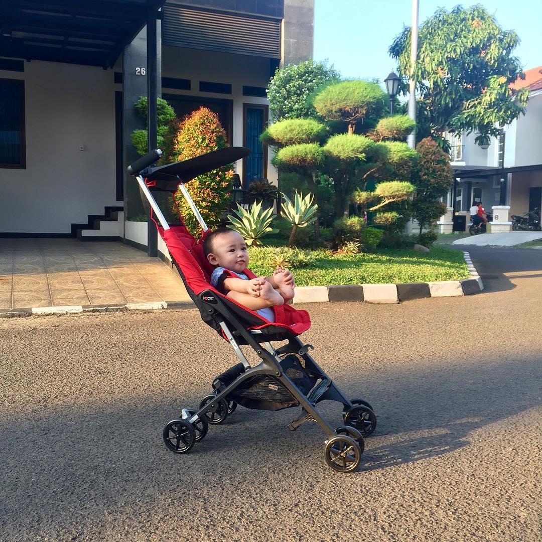 Stroller Cocolatte Pockit Gen 5 | Spotsewa