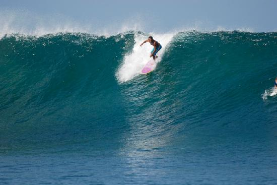 Sewa Longboard Surfing Pantai Kuta di toko Hendra Surfboard daerah Denpasar, Bali - Sewa menyewa jadi lebih mudah di Spotsewa